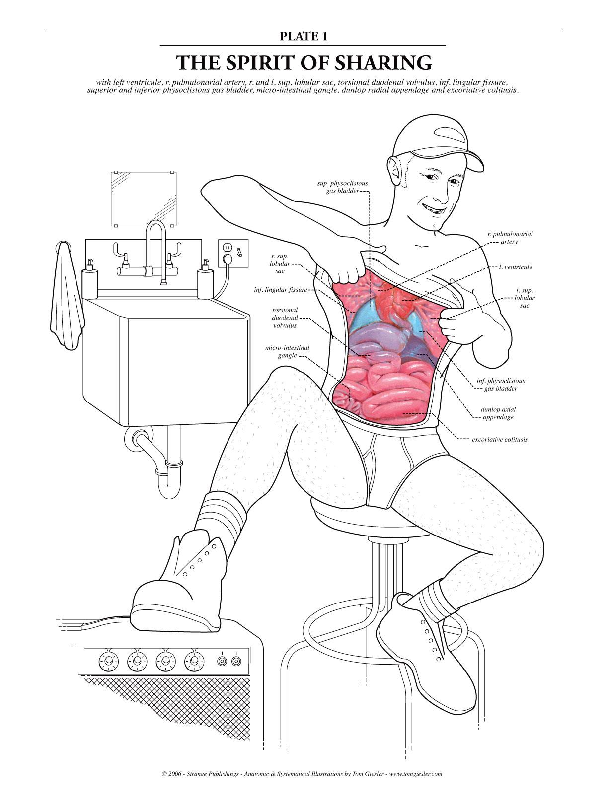 Смотреть урок анатомии 14 фотография